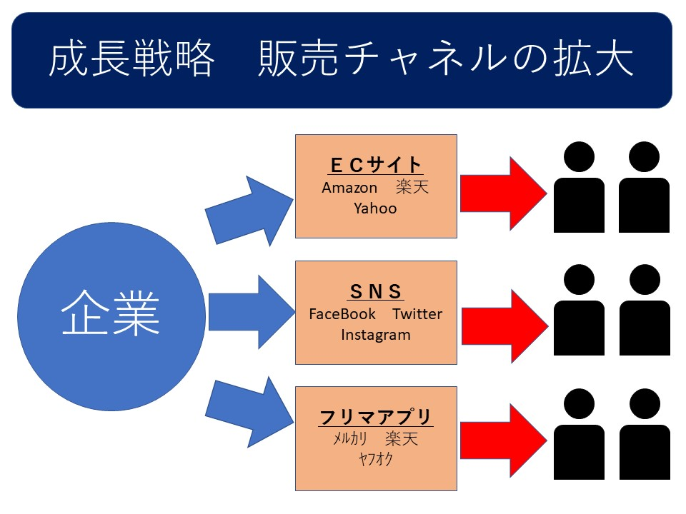 成長戦略 販売チャネルの拡大